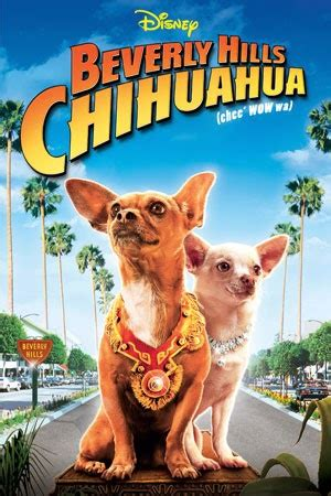 Le Chihuahua de Beverly Hills 2008 film complet