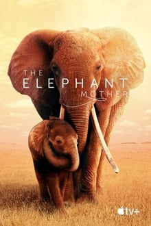 The Elephant Mother 2019 film complet